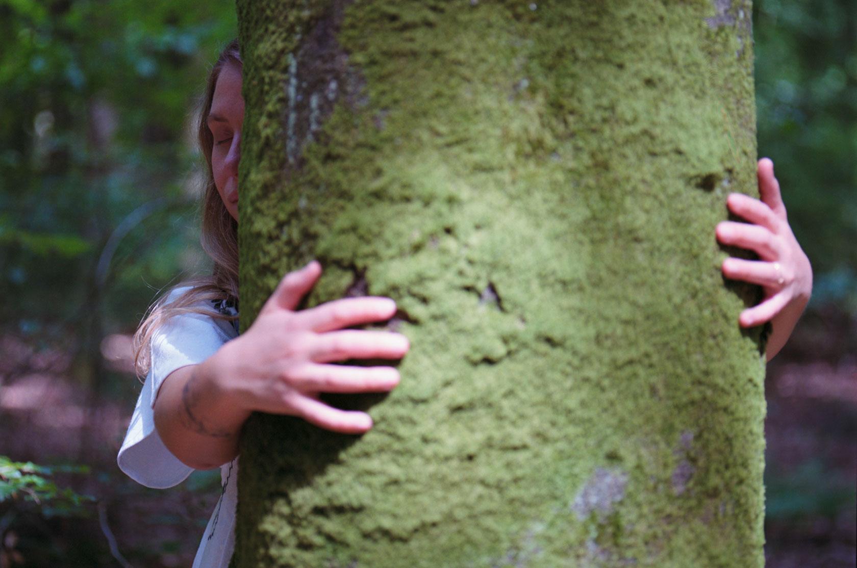 Mimameid Tree Hug