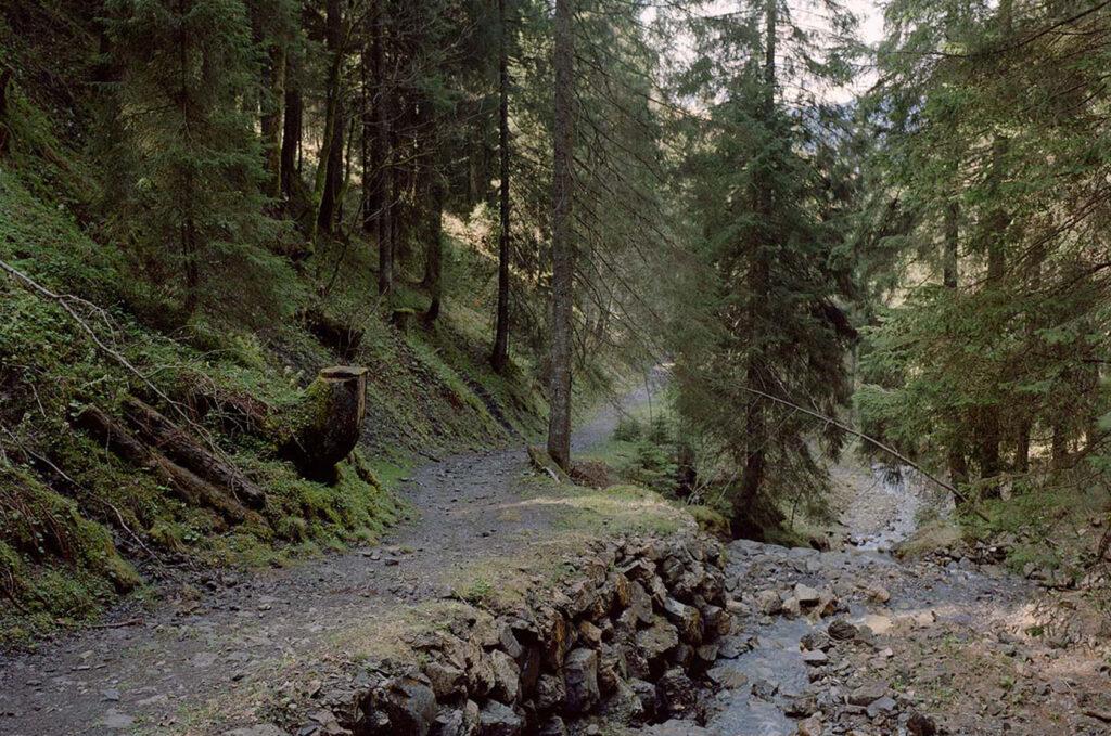 Gaisalpe Wanderweg